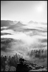 Lagervaror egen produktion Foggy Forest Black & White I - 50x70 cm