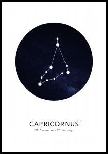 Bildverkstad Capricornus Poster