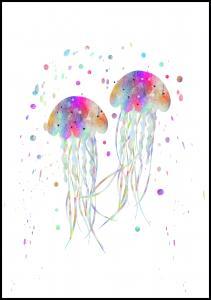 Bildverkstad Jellyfishes stingers Poster