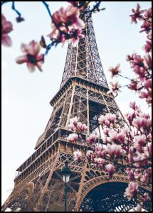 Lagervaror egen produktion Eiffel Tower Blossoms