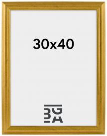 Västkusten Gold 30x40 cm