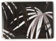Focus Base Line Canvas Soft Schwarz - 36 Bilder 11x15 cm