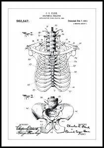 Bildverkstad Patentzeichnung - Anatomisches Skelett II