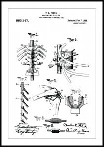 Bildverkstad Patentzeichnung - Anatomisches Skelett III