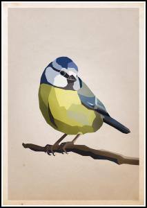 Bildverkstad Blue tit Poster