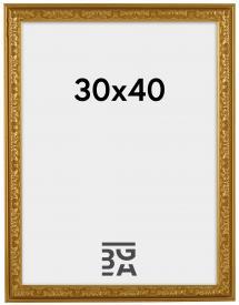Artlink Rahmen Nostalgia Gold 30x40 cm