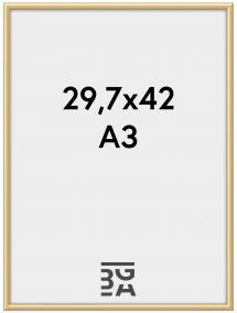 Walther New Lifestyle Plexiglas Gold 29,7x42 cm (A3)