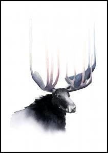 Bildverkstad The Crown of the King
