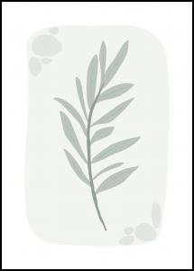 SANNY Formgivare OLIVE Poster
